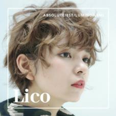 LICO 所属のよしひさみさき