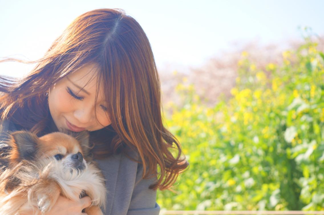 ✳︎(=゚ω゚)ノ祝!!6周年✳︎  ミニモ限定トリートメント&お子様カット無料