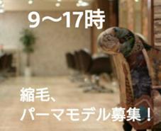 2500円~!!縮毛矯正、デジタルパーマ、ゴールドパーマモデル募集中!