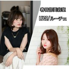 Luce(ルーチェ)所属の尾澤尚希