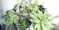tronica    【トロニカ】所属のキリュウアヤカ