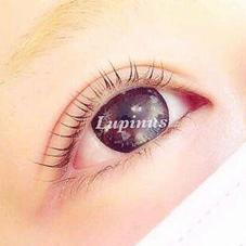 Lupinus【ルピナス】所属のLupinus高柳