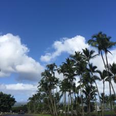 世界最高峰のハワイ伝統のロミロミマッサージ