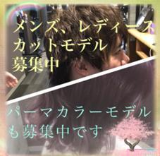 hair resort Ai所属の和田知基