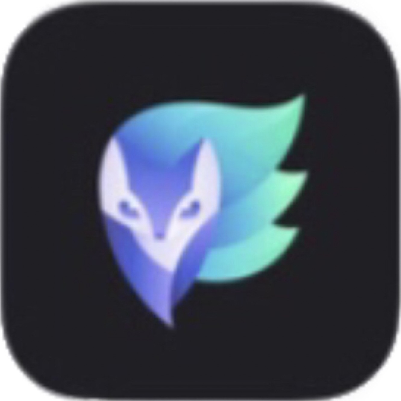 Lightricks Ltd.「Enlight」