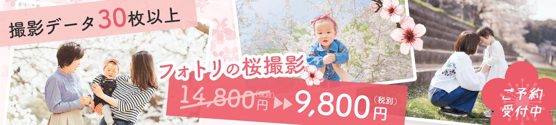 Sakura pc