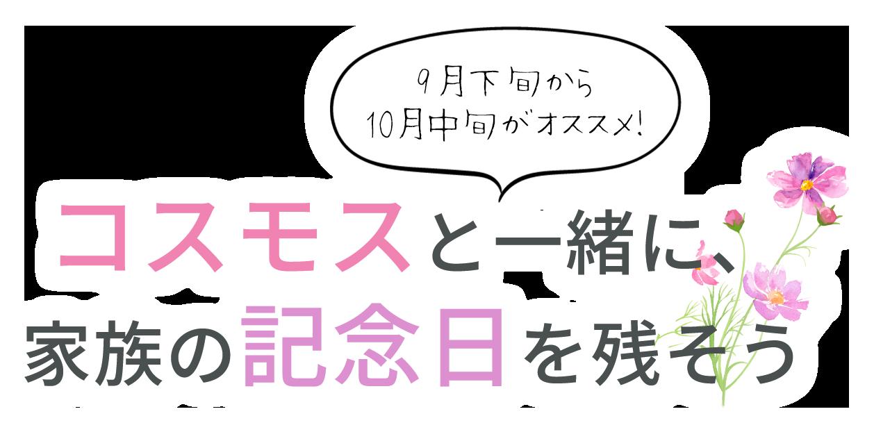 組数限定!おトクな撮影会 ¥4,980