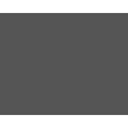 Pr icon02