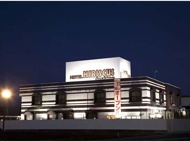 ホテル ハイビスカス リゾート アンド ビジネス