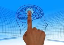 【今すぐ押したい】脳内のやる気スイッチを発見|慶應義塾大学