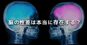 【男性脳と女性脳】脳の性差は本当に存在する?|英国の研究結果