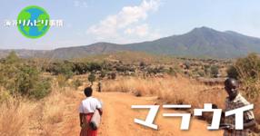 vol.3 マラウイにおけるリハビリテーションの現状