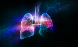 【常識を覆す】肺は呼吸機能だけじゃない!「造血」機能があることが解明
