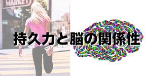 持久力と脳の関係性を解明|筑波大学