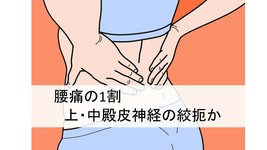 腰痛の1割は、上・中殿皮神経の絞扼の可能性がある