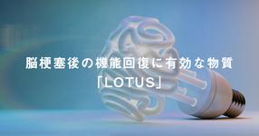 脳梗塞後の機能回復に有効な神経回路形成因子「LOTUS」~治療への臨床応用に期待~