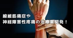 【最新】レディーガガも公表した「線維筋痛症」や神経障害性疼痛の治療薬開発!