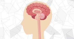 リハビリ専門職の脳内は「◯」でまみれていた件