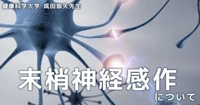 末梢神経感作について ~SLRで痛みが生じる理由~