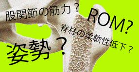 股関節OAの進行に関わる要因は、股関節の筋力?ROM?姿勢?脊柱の柔軟性低下?