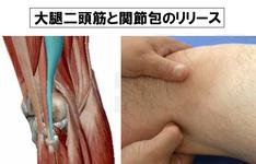 筋、軟部組織、そして関節包を指先で見る