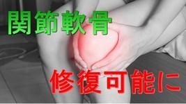 関節軟骨の再生医療