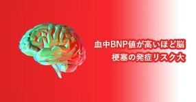 血中BNP値が高いほど脳梗塞の発症リスク大