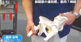 股関節の違和感に対するクリニカルリーズニング|園部俊晴先生 #2