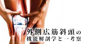 外側広筋斜頭の機能解剖学と一考察|吉田俊太郎