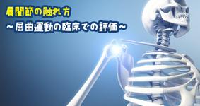 肩関節の触れ方  ~屈曲運動の臨床での評価~