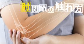 肘関節の触れ方  ~臨床での基本的な評価方法~