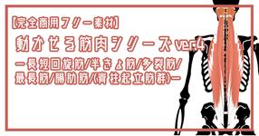 【完全商用フリー素材】動かせる筋肉シリーズver.4ー長短回旋筋/半棘筋/多裂筋/最長筋/腸肋筋/(脊柱起立筋群)ー#2