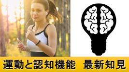 運動をすると認知機能が良くなる理由|