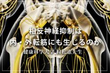【1ヶ月基礎医学講座】13日目相反神経抑制ー生理学編ー