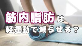 自宅でできる運動により筋内脂肪の減少が判明