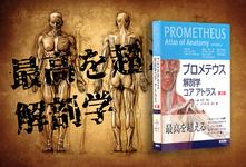 【書評】最高を超える解剖学*立ち読み可能