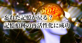 記憶をスムーズに思い出すことができる薬が発見