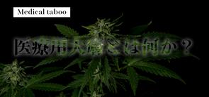 【Medical taboo】医療用大麻とは何か?-序章-