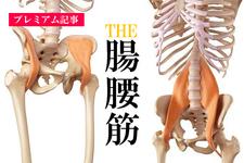 【プレミアム】THE腸腰筋ー大腰筋ー