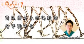 【運動器7】 背臥位から歩行動作を予測する10のアライメント評価 (後編)