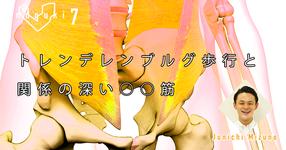【運動器7】トレンデレンブルグ歩行と関係の深い○○筋
