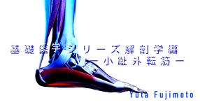 【SPOT Writer】基礎医学シリーズ解剖学編ー小趾外転筋ー