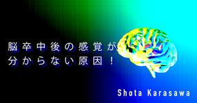 【SPOT Writer】脳卒中後の感覚が分からない原因!