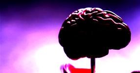 高次脳機能障害の治療への道しるべ
