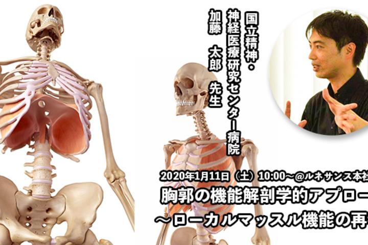 【2020年1月11日】胸郭の機能解剖学的アプローチ 〜ローカルマッスル機能の再考〜|加藤太郎先生