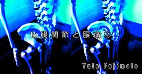 【SPOT Writer】仙腸関節と腰痛②