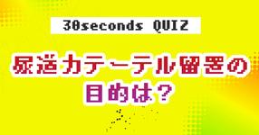 【クイズ】尿道カテーテル留置の目的は?
