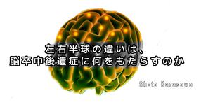 【脳卒中シリーズ】左右半球の違いは脳卒中後遺症に何をもたらすのか