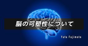 脳の可塑性について
