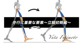 歩行に重要な要素〜立脚初期編〜